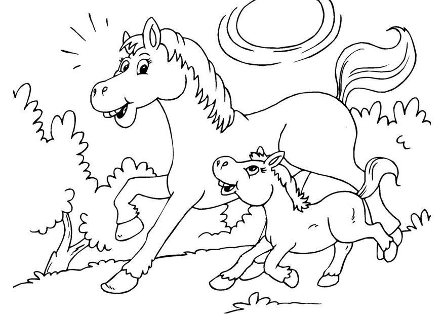 Malvorlage Pferd und Fohlen Ausmalbild 25967