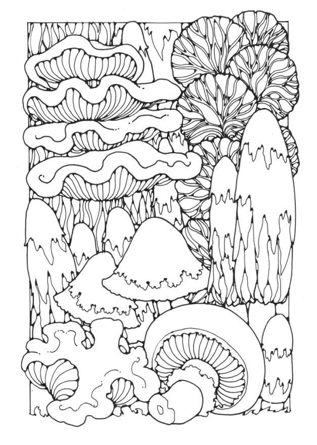 Malvorlage Pilze Ausmalbild 16353
