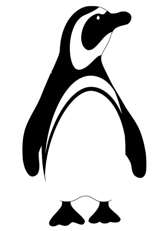 Malvorlage Pinguin - Kostenlose Ausmalbilder Zum