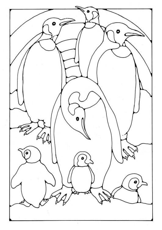 Malvorlage Pinguine Ausmalbild 19580