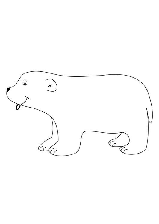 Malvorlage Polarbär - Kostenlose Ausmalbilder Zum