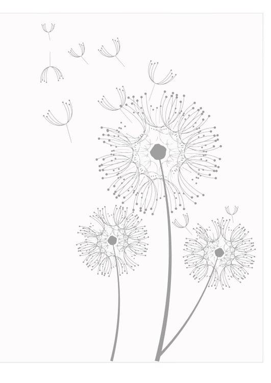 Malvorlage Pusteblume - Kostenlose Ausmalbilder Zum