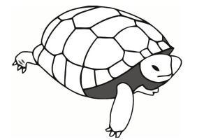 38 Schildkröten Bilder Zum Ausmalen   Besten Bilder von ...
