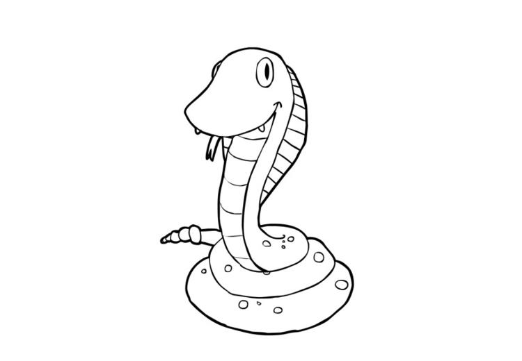 Malvorlage Schlange - Kostenlose Ausmalbilder Zum
