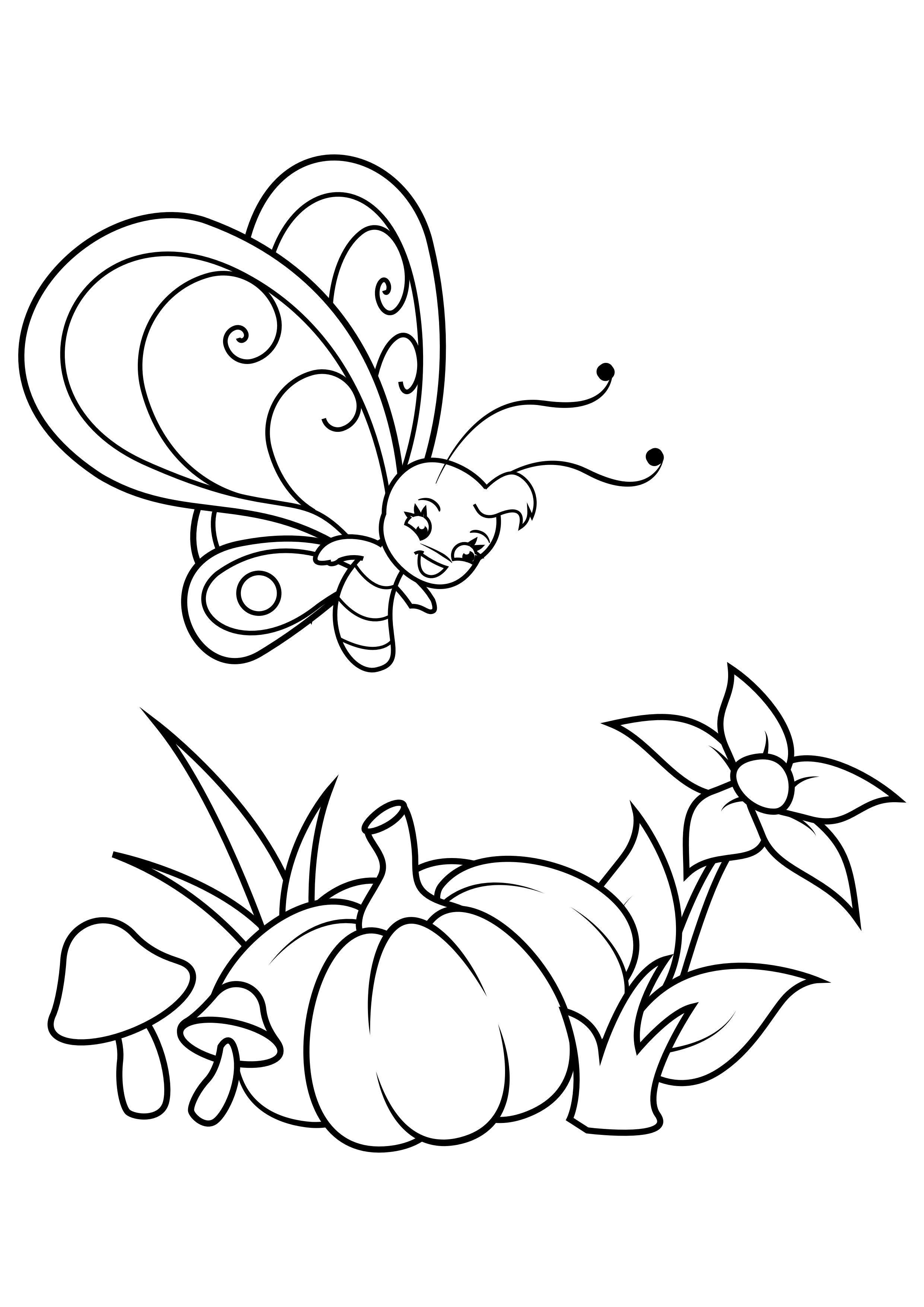 Malvorlage Schmetterling über Blume und Kürbis