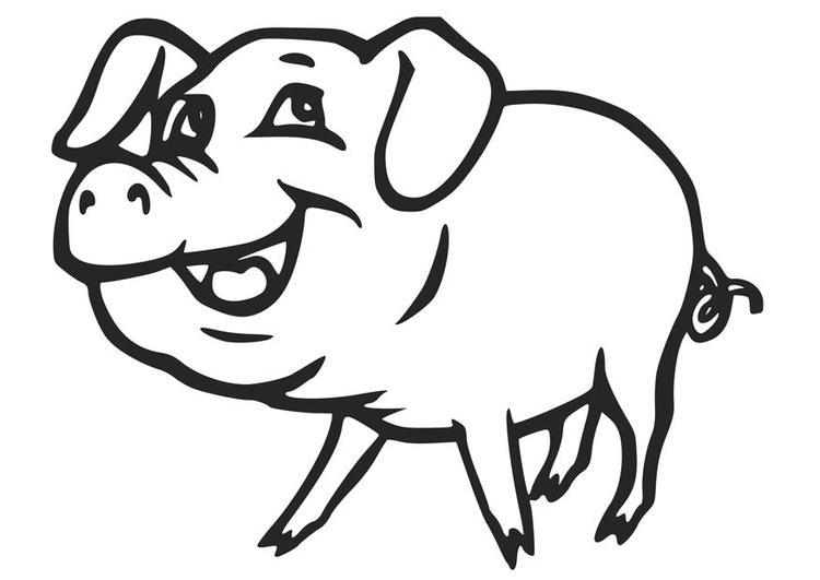 Malvorlage Schwein - Kostenlose Ausmalbilder Zum
