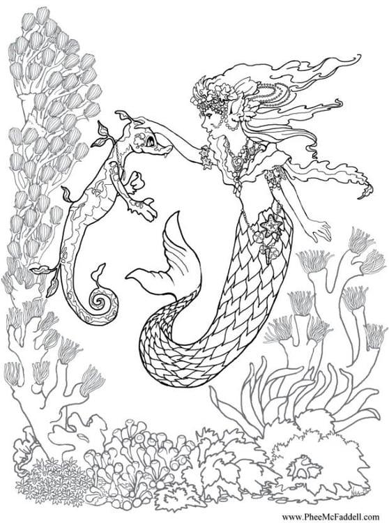 Malvorlage Seejungsfrau mit Seepferdchen Ausmalbild 6881