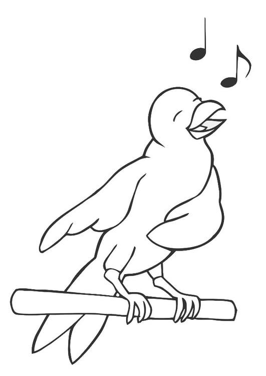 Malvorlage singender Vogel Ausmalbild 19450