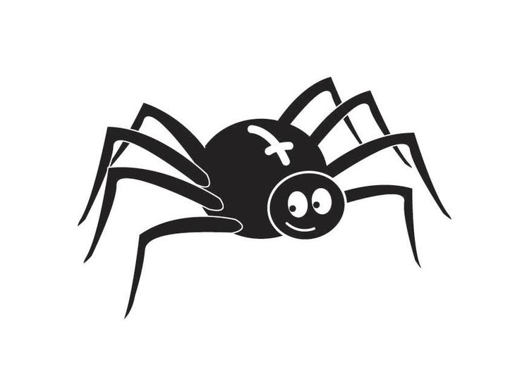 Malvorlage Spinne - Kostenlose Ausmalbilder Zum Ausdrucken