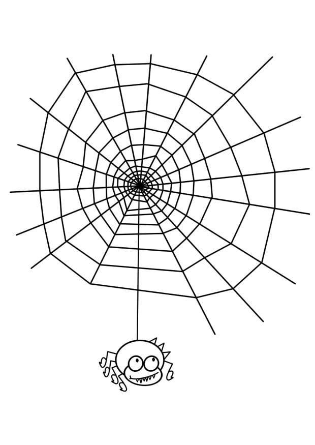 Malvorlage Spinnennetz mit Spinne - Kostenlose
