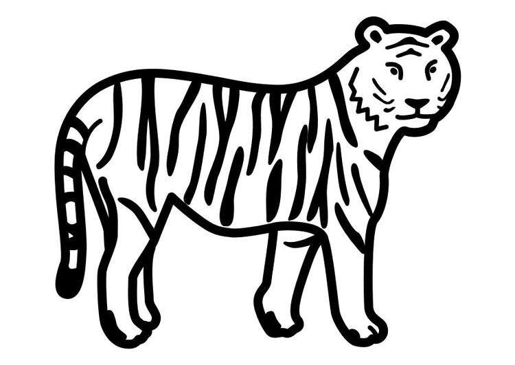 Malvorlage stehender Tiger - Kostenlose Ausmalbilder Zum