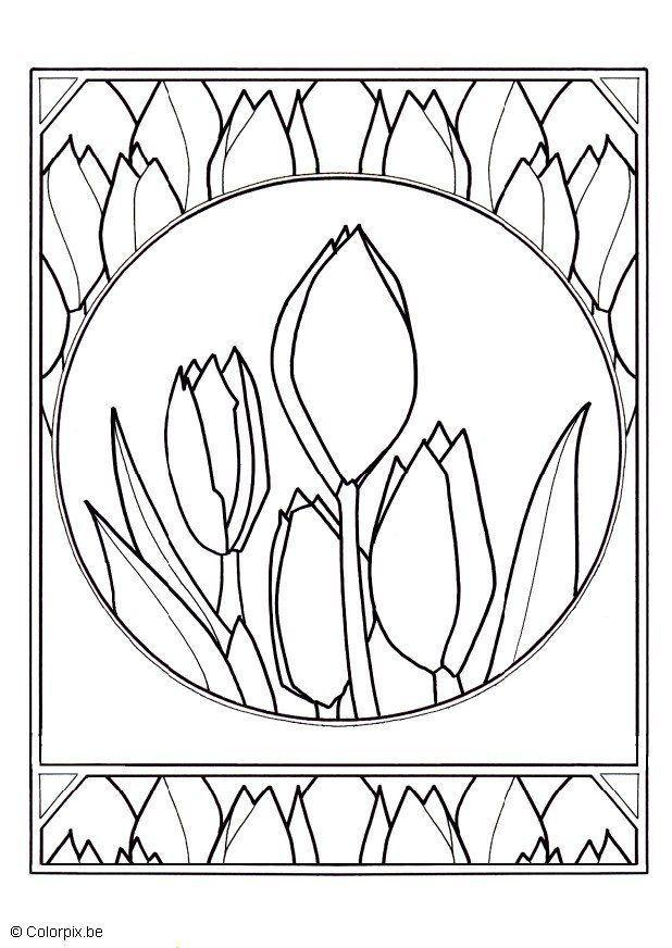 32 Tulpen Bilder Zum Ausmalen - Besten Bilder von ausmalbilder
