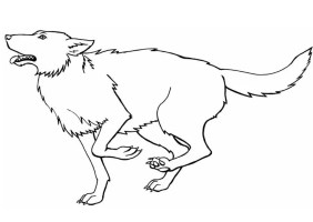 Malvorlage Wolf   Ausmalbild 8917.