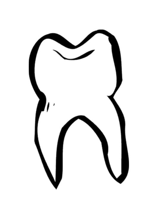 Malvorlage Zahn - Kostenlose Ausmalbilder Zum Ausdrucken