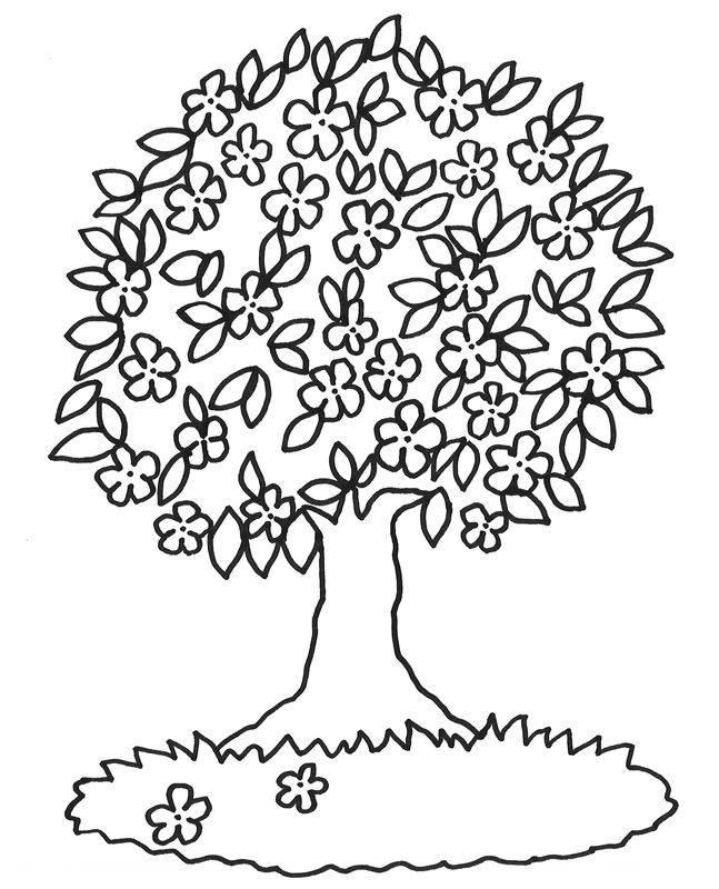 Kostenlose Malvorlage Bäume Blühender Baum zum Ausmalen