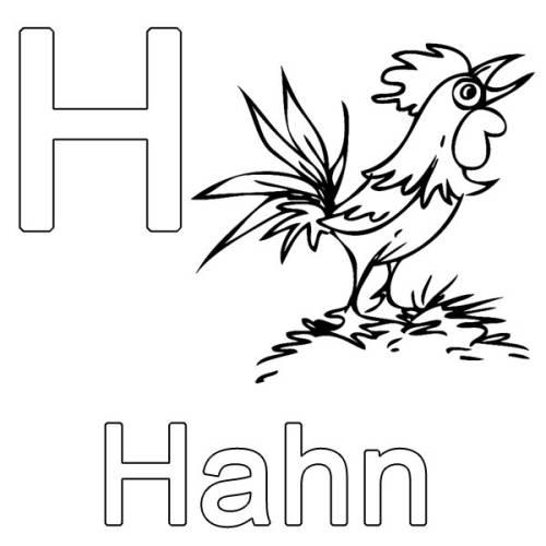 Kostenlose Malvorlage Buchstaben Lernen H Wie Hahn Zum