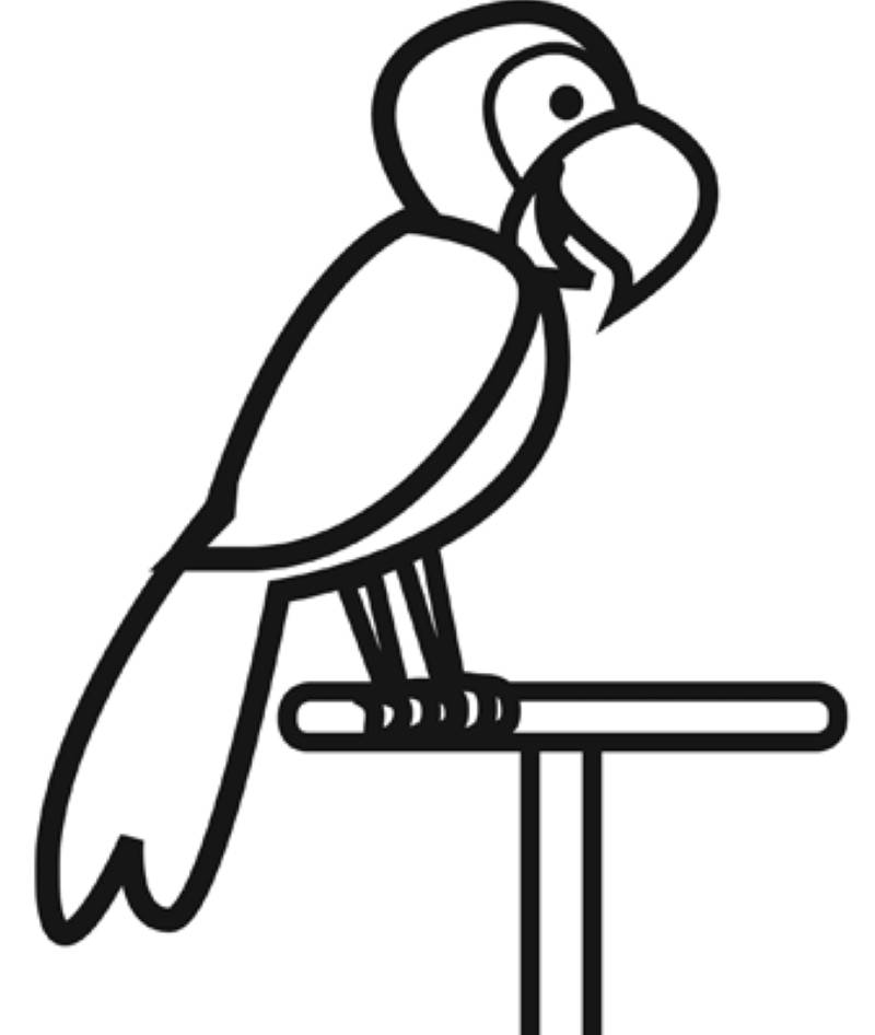 Kostenlose Malvorlage Vögel Papagei zum Ausmalen