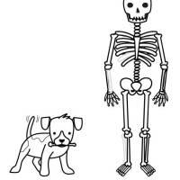 Kostenlose Malvorlage Halloween Skelett und Hund ausmalen ...