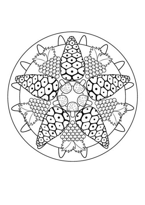 Kostenlose Malvorlage Mandalas Herbst-Mandala zum