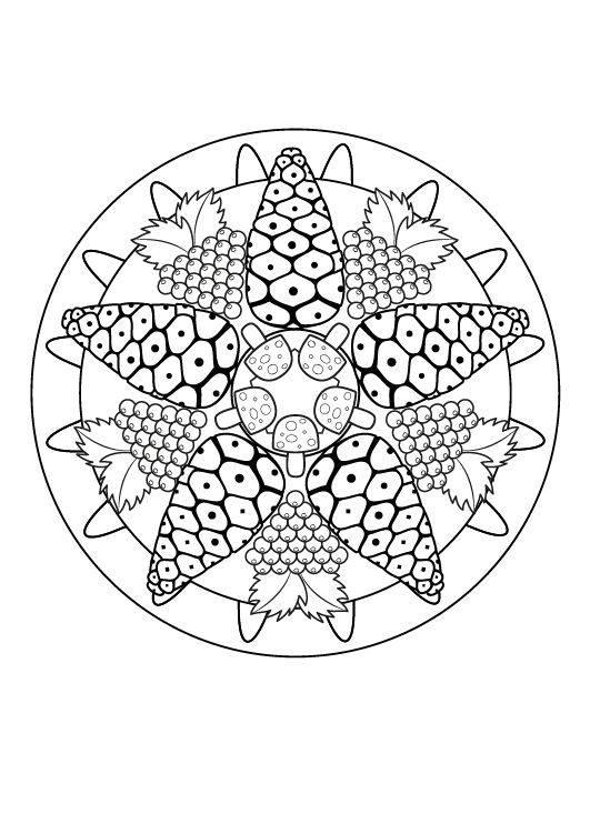 Ausmalbild Mandalas Herbst-Mandala zum Ausmalen kostenlos