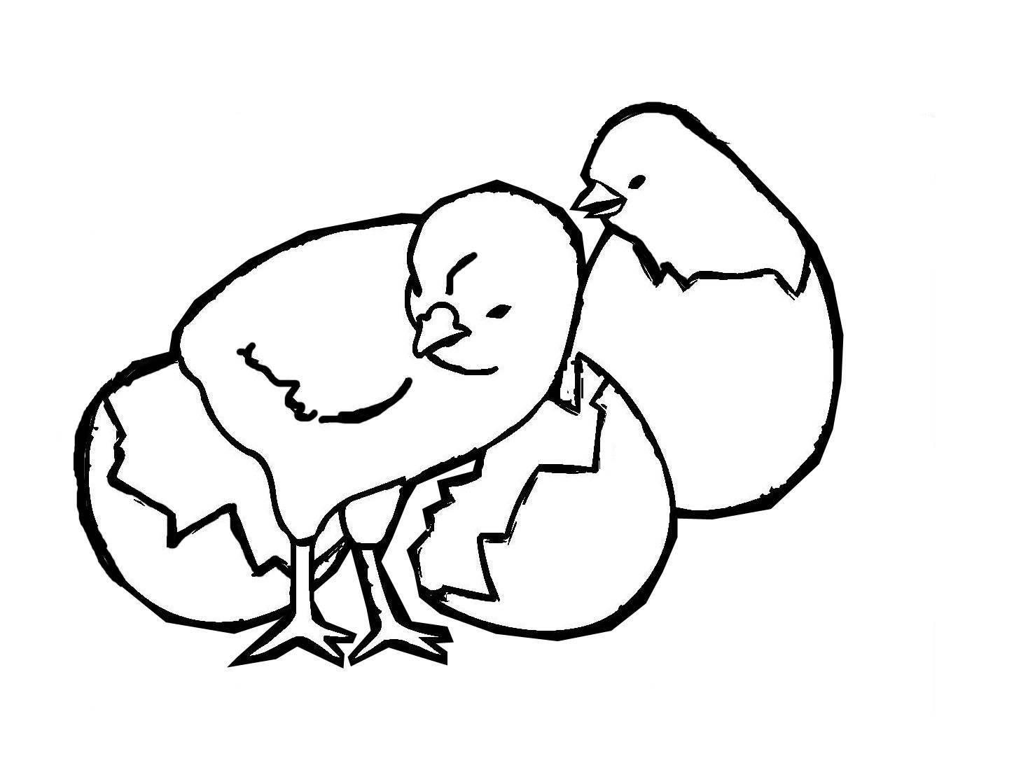 Kostenlose Malvorlage Ostern Zwei Küken zum Ausmalen