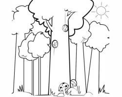 Kostenlose Malvorlage Bäume Sommerwald zum Ausmalen