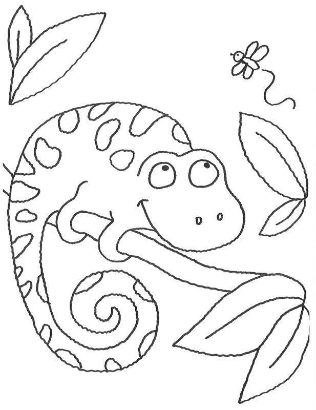 Ausmalbild Tiere Chamäleon auf einem Ast kostenlos ausdrucken
