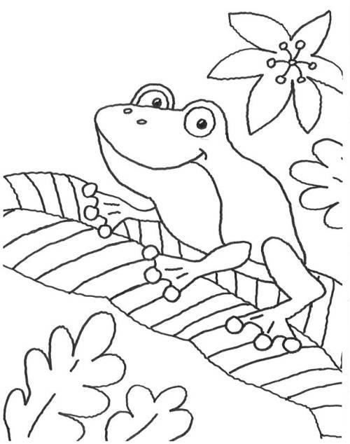 Kostenlose Malvorlage Tiere Frosch auf einem Blatt zum