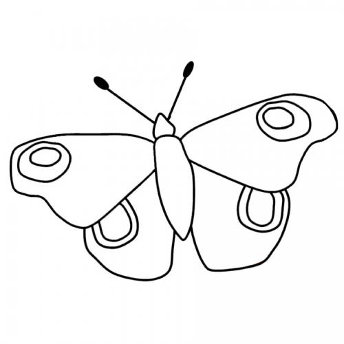 Ausmalbild Schmetterling Einfach - Cartoon-Bild