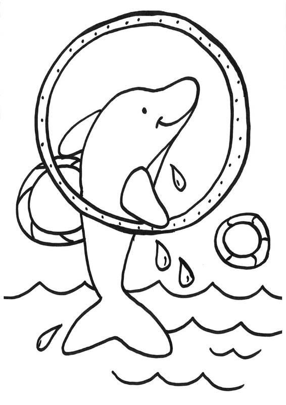 Kostenlose Ausmalbilder und Malvorlagen Delfine und Wale