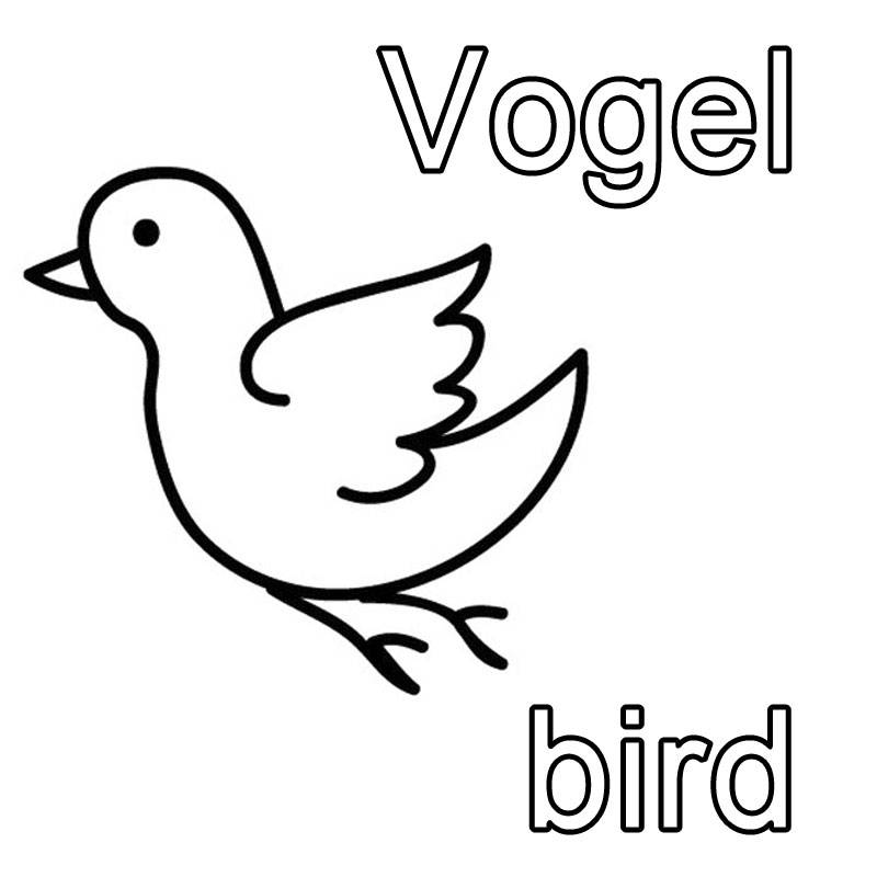Kostenlose Malvorlage Englisch lernen Vogel - bird zum