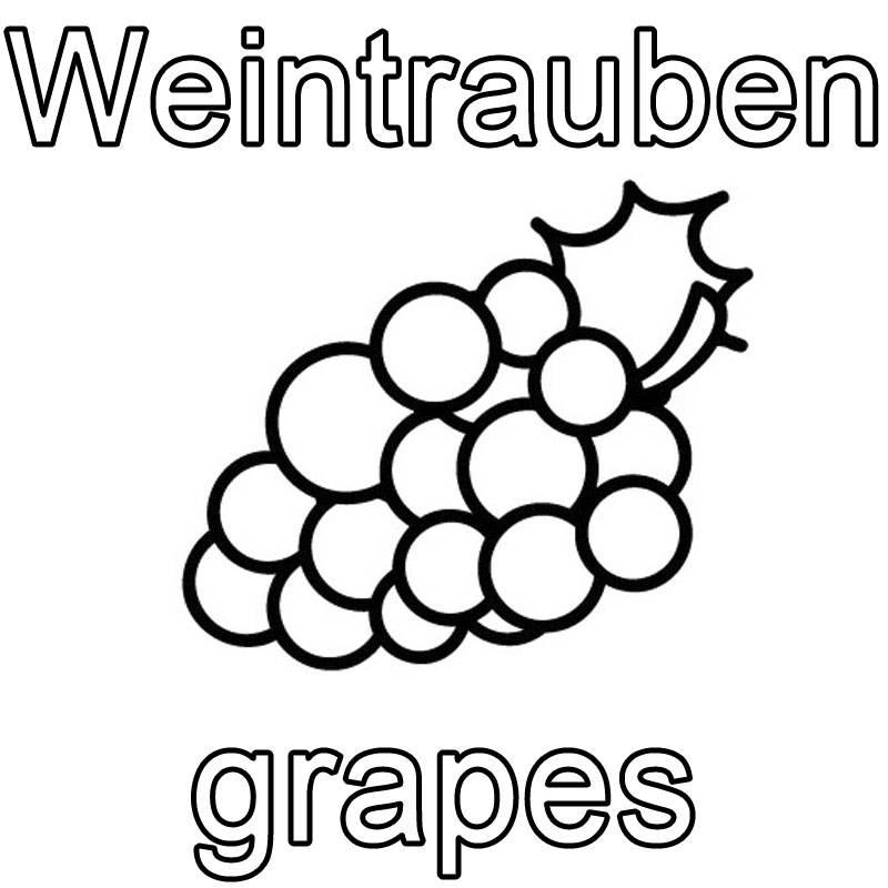 Kostenlose Malvorlage Englisch lernen Weintrauben