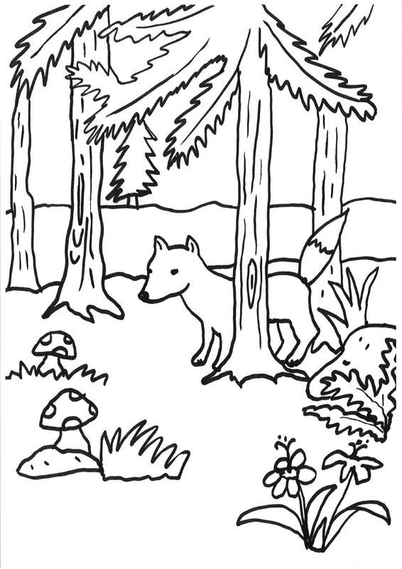 Kostenlose Malvorlage Füchse Fuchs im Wald zum Ausmalen