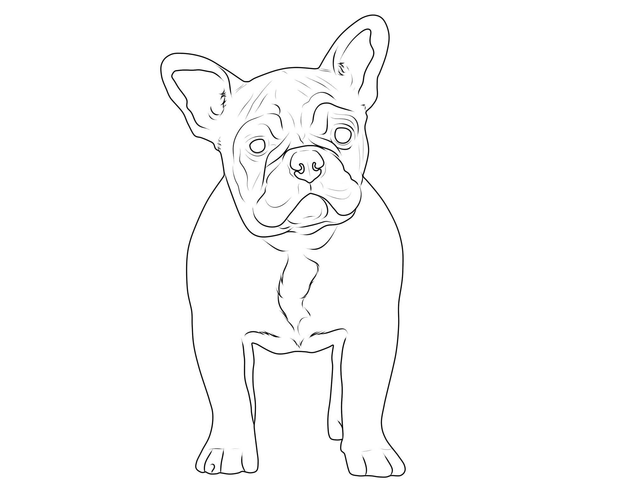 Ausmalbild Hunde Französische Bulldogge kostenlos ausdrucken