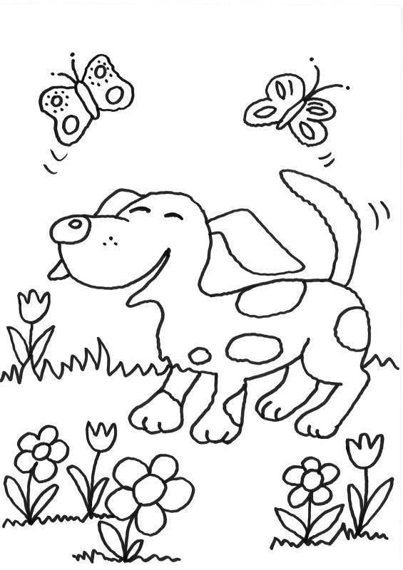 Ausmalbild Hunde Hund Und Schmetterlinge Kostenlos Ausdrucken