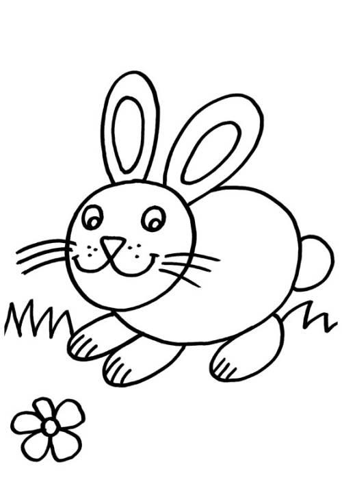 Dibujo De Un Conejo Con Huevos De Pascua