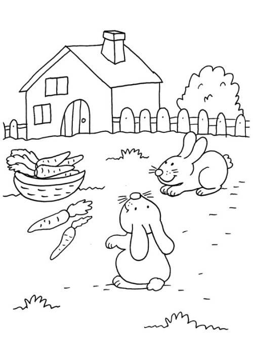 Kostenlose Malvorlage Kaninchen Kaninchen und Möhren zum