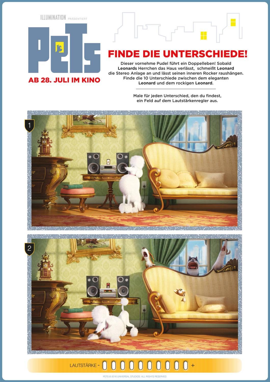 Ausmalbild Suchbilder Fr Kinder Pets Fehlersuchbild