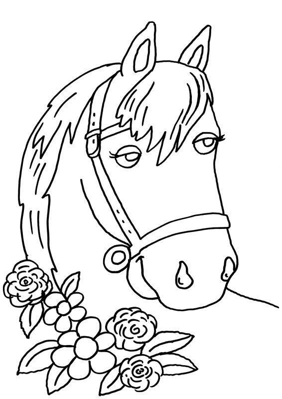 Pferd Malvorlage Einfach