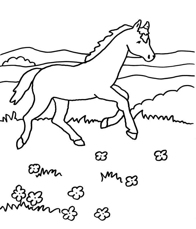 Kostenlose Malvorlage Pferde Pferd galoppiert zum Ausmalen