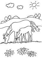 Kostenlose Malvorlage Pferde Stute und ihr Fohlen ...