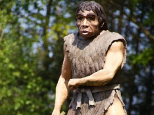 Warum hatten Steinzeitmenschen selten Karies