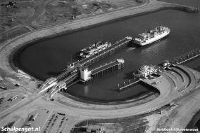 De gehele TESO-vloot is te zien op dit 'familieportret' uit 1964. Van links naar rechts zien we de veerboten Zeemeeuw, Voorwaarts, Koningin Wilhelmina, Marsdiep en De Dageraad.