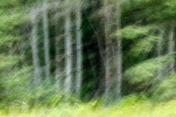 Alaska Landscape - Jeff Schultz
