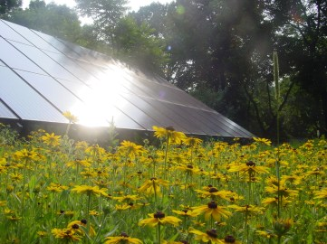 14_the Schuylkill Center is powered by PA wind and our own solar panels