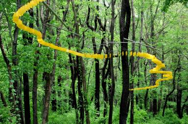 20_239 artists have participated in shows here since our environmental art program started in 2000