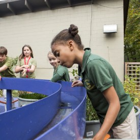 Rain Yard by Stacy Levy at The Schuylkill Center for Environmental Education
