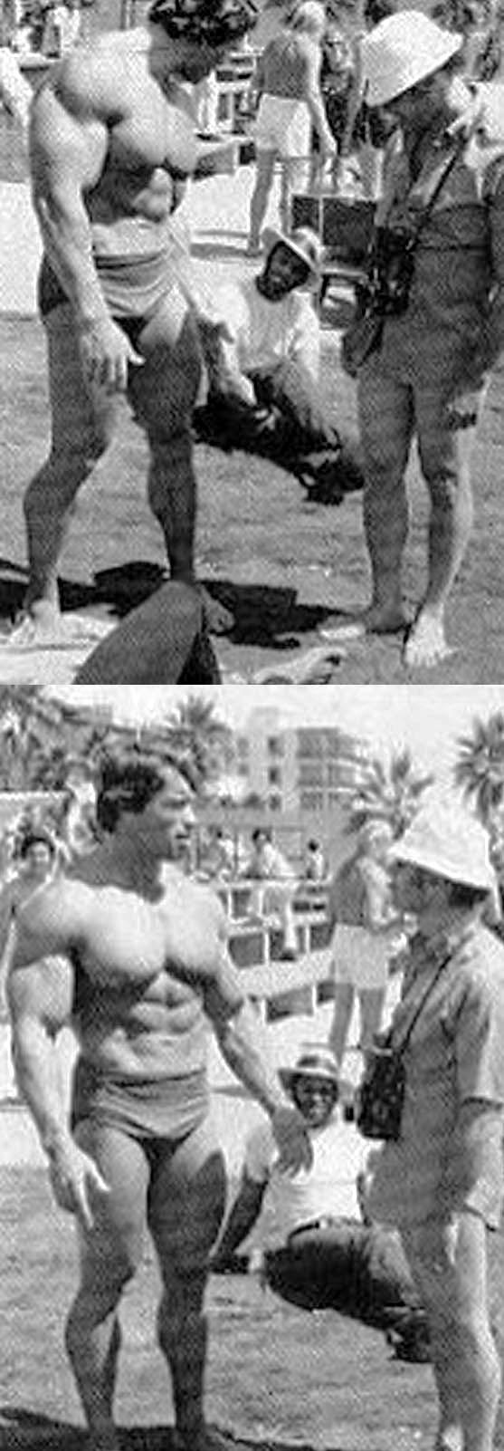 Image Result For Arnold Schwarzenegger