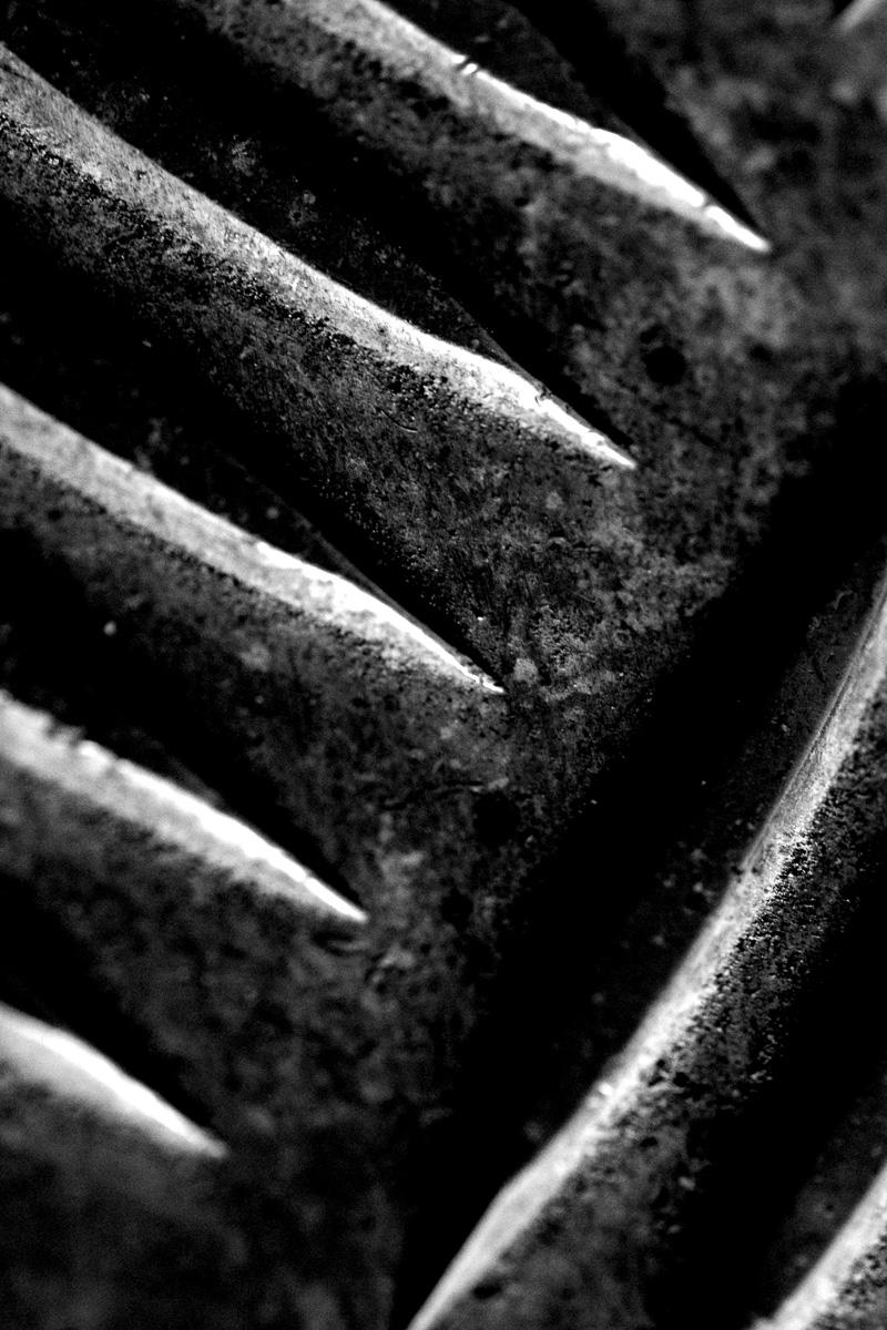 schwarzerfleck titelbild