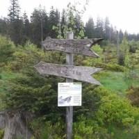 Start zum 1km langen Lotharpfad